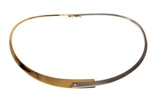 Bi-color gouden spang